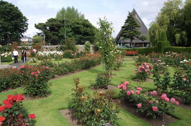 Jardim Botânico - passeio